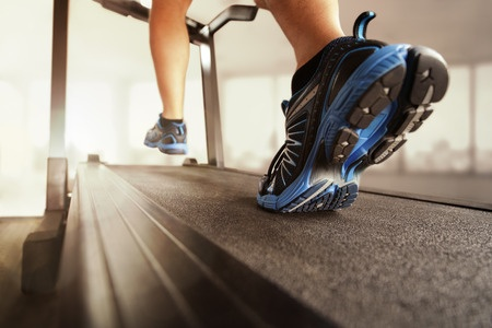 fitness equipment rochester ny